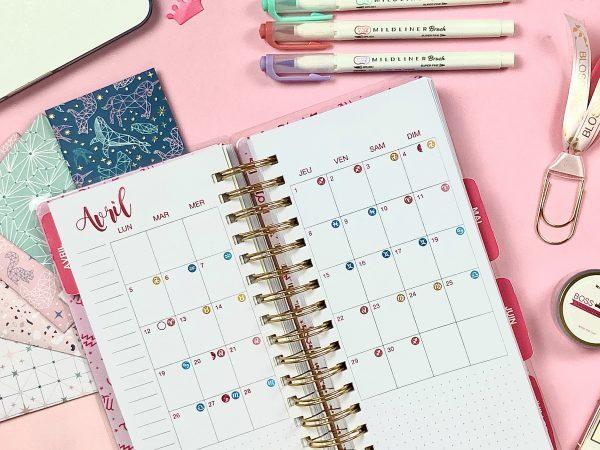 Image Vue Mensuelle Astro Productivity Planner
